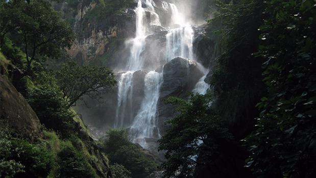 Visit Mt. Udzungwa